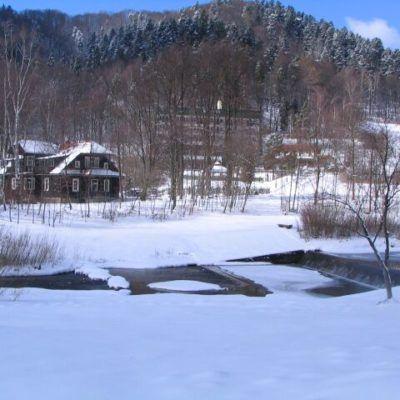 widok na dom zza szczawnika